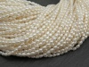 Freshwater Pearl Ivory Rice Beads 3mm ~ 15'' Strand