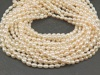 Freshwater Pearl Ivory Rice Beads 6mm ~ 16'' Strand