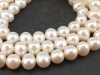 Freshwater Pearl Ivory Potato Beads 8-9mm ~ 16'' Strand